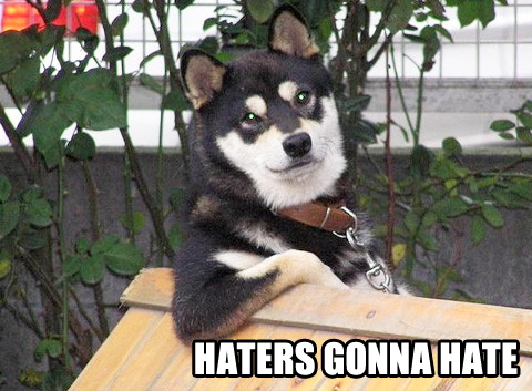haters-gonna-hate-cool-dog.jpg
