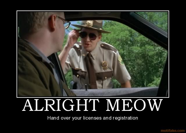 alright-meow-super-troopers-demotiv.jpg