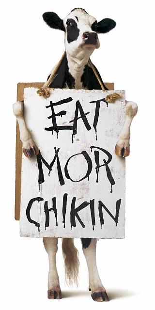 eat-more-chicken.jpg